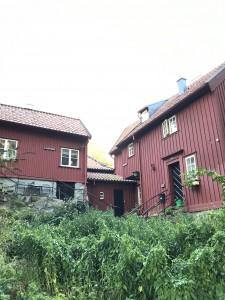 Här i Gathenhielmska Reservatet finns ett par av Higabs lägenheter. Foto: Eva Heyman